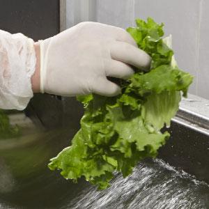食材の洗浄